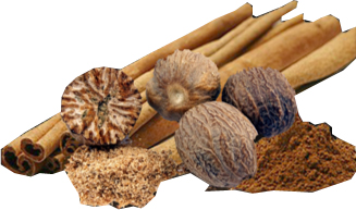 ingredienti-birra-artigianale