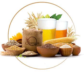 ingredients-beer