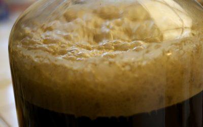 Il lievito della birra – ecco come e perché una birra diventa frizzante